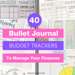 budget-journal-trackers-twitter